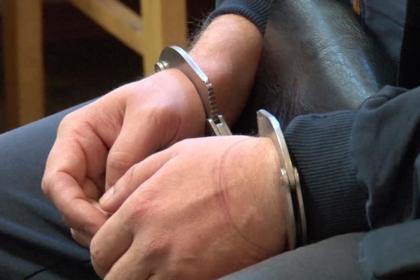 Напавшему на главу ЦИК Памфилову предъявили обвинения
