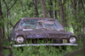 Енотиха устроила гнездо в старом Ford на заброшенной ферме в канадской провинции Саскачеван. Заднее сиденье автомобиля — идеальное убежище для ее детенышей. Попасть внутрь можно только через дыру в лобовом стекле, а для койотов, которые охотятся на енотов, она узковата.