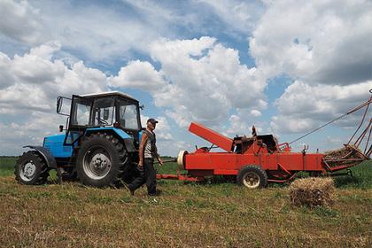 Начинающим новгородским фермерам выдали гранты для бизнеса