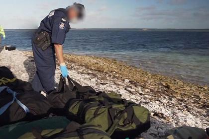 Тюлень помог полицейским задержать контрабандистов с тонной наркотиков
