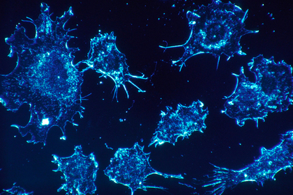 Раскрыта связанная с раком столетняя тайна