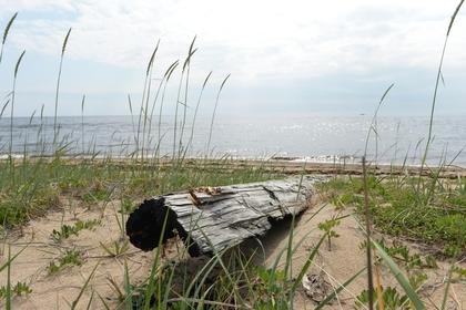 В Северодвинске взялись за опасные объекты после ЧП полигоне