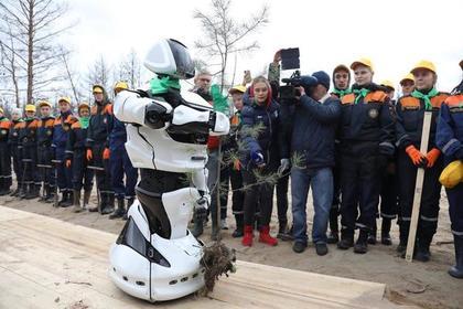Россияне начали массово сажать деревья