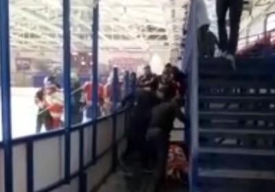 Хоккеист подрался с фанатами во время матча