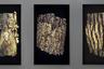 Три фрагмента коры в инсталляции фотографов Персина Броерсена и Маргиты Лукач — остатки европейского реликтового первобытного леса, наиболее крупный участок которого сохранился в заповеднике Беловежская Пуща. Для Броерсена и Лукач природа — феномен, от которого современное человечество наиболее отдалилось. Через серию своих работ, связанных с лесом, они пытаются понять ее таинственную сущность.