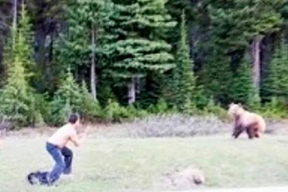 Мужчина пытался подраться с медведем гризли и поплатился