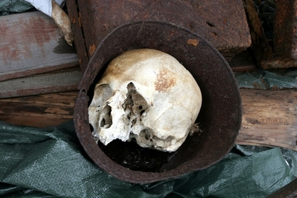 Россиянин купил землю для участка и нашел в ней черепа