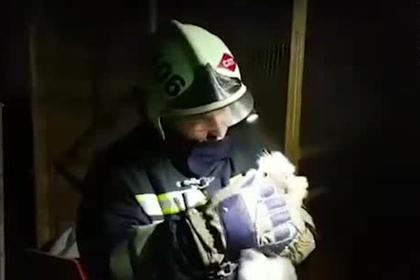 Чеченские пожарные спасли животных из горящего зоопарка