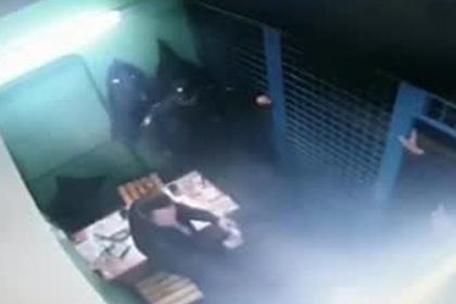 Опубликовано видео момента расстрела полицейских в Москве