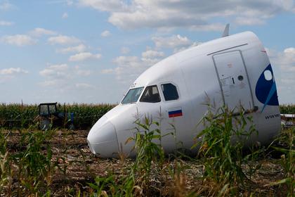 Раскрыт размер выплат за посадку самолета в кукурузном поле