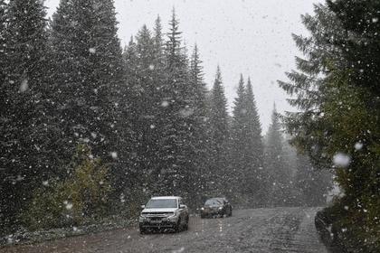 В центральной России прошел первый снег