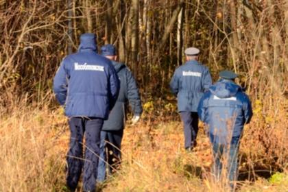 Двое взрослых и ребенок пострадали при падении деревьев в Москве