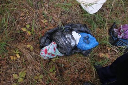 Стали известны подробности смерти похищенного сиделкой российского младенца