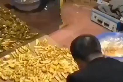 «Честный» чиновник прятал в подвале тонны золота