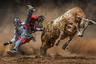 Родео — традиционный вид спорта в Северной Америке, исторически сложившийся среди ковбоев. Его участники пытаются удержаться на диком быке, а также на неоседланной и оседланной лошади. Самые успешные ковбои получают до 100 тысяч долларов в год (6,4 миллиона рублей), но в таком спорте большая часть выигрыша часто уходит на лечение.