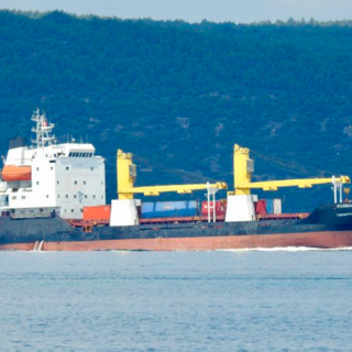 Грузовое судно «Пижма»