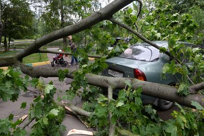 Россиян предупредили о приближении разрушительного урагана «Мортимер»