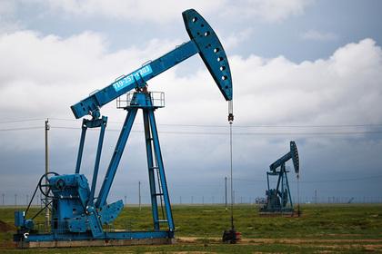 От получающих льготы российских нефтяных компаний не увидели отдачи