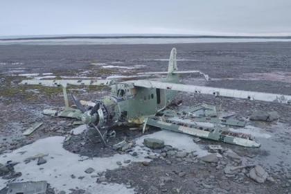 Члены экспедиции Северного флота спаслись от белого медведя на крыле самолета
