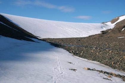 Ученые исследуют тающий ледник Таймыра
