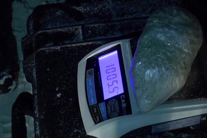Полиция России и Таджикистана пресекла поставки сотен килограммов наркотиков