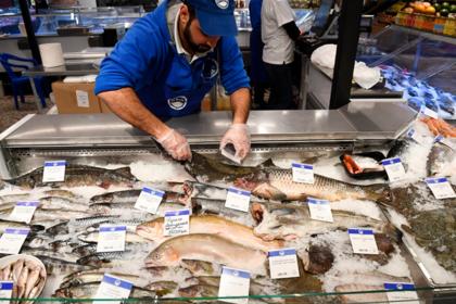 Россиян научили распознавать некачественную рыбу в магазине