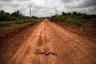 """В августе 2019 года в штате Пара вспыхнули самые сильные за последние шесть лет наблюдений лесные пожары. Местная пресса писала, что поджоги координировали местные фермеры и предприниматели. «Это избиратели Болсонару, — <a href=""""https://www.theguardian.com/world/2019/aug/26/brazil-amazon-fire-day-warning"""" target=""""_blank"""">цитировала</a> газета The Guardian чиновника из природоохранного ведомства, работавшего в районе пожаров. — Защита Амазонии беспокоит их в последнюю очередь»."""