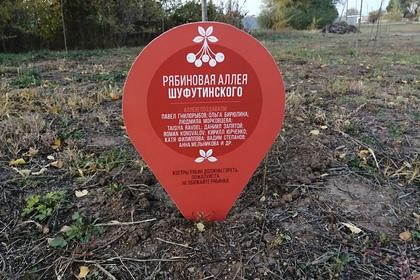 В российском городе появилась рябиновая аллея Шуфутинского