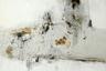Представитель махачкалинской школы абстракционизма Ярослав Бройтман — сын доктора филологических наук и автор первого в мире учебника по исторической поэтике Самсона Бройтмана и искусствоведа и поэтессы Сталины Бачинской. Художник живет и работает в Берлине, его произведения хранятся в крупных государственных и частных собраниях по всему миру. В Москве свои работы Бройтман представит впервые за долгие годы.
