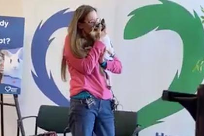 Трогательная встреча хозяйки с потерявшимся 12 лет назад псом попала на видео