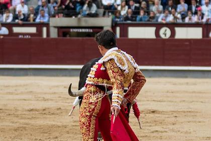 Бык боднул любовника испанской принцессы в пах