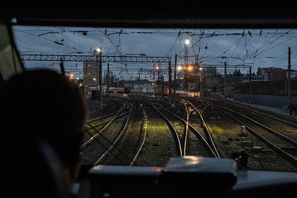 Россиянки остановили грузовой поезд ради кормления собак