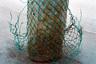 Еще одна метафора Бермудского треугольника и продолжение зловещей истории Обводного канала: «Судьба уникальной находки оказалась печальной, — говорит фотограф. — Ломовые извозчики отвезли гранитные плиты в камнерезную артель, где из них напилили поребрики для мостовых Лиговского проспекта. Человеческие останки сложили в несколько мешков и вывезли на свалку».
