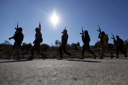 Кремль оценил масштаб операции Турции в Сирии