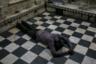 Хотя к обеду пол в храме становится липким от крысиных фекалий, обувь все равно приходится снимать. Верующих антисанитария не смущает — они могут молиться лежа на грязном полу.