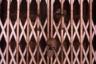 Все в храме дышало древностью, духовностью и смыслом. Грызуны перестали быть грызунами, люди двигались с ними в едином ритме, все — живые существа, уважающие друг друга. После визита сюда даже перспектива реинкарнации в крысу кажется не такой уж тоскливой.