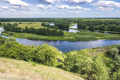 Рыбы помогут очистить реку в России