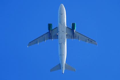 В двигатель российского самолета залетела птица