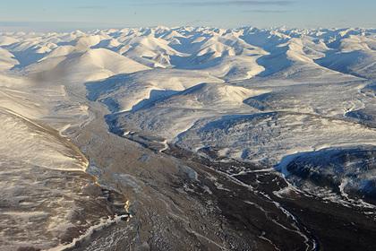 Население Арктики сократилось