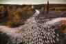 Семья Аларкон — одни из последних, кто до сих пор работают кочевыми пастухами в Европе. Феномен отгонного животноводства сохранился на протяжении веков: семьи пастухов мигрируют со своими животными в поисках лучших пастбищ, климата и условий жизни. В Испании около 150 семей живут как пастухи-кочевники. Дважды в год Антонио, Мария и их два сына проходят почти 200 километров за восемь дней, чтобы перевести сотни овец из Фатимы (провинция Гранада) в Навас-де-Сан-Хуан (провинция Хаэн). Во время путешествия они разбивают лагерь в лесах на горных склонах вдоль древних троп, известных как Каньядас Реалес.