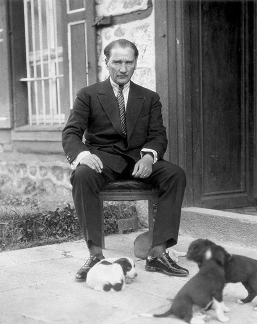 Ататюрк во дворце Долмабахче в окружении щенков
