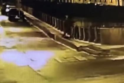Попытки доцента СПбГУ выкинуть в реку останки убитой студентки попали на видео