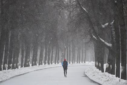 Россиянам раскрыли причины зимних температурных аномалий