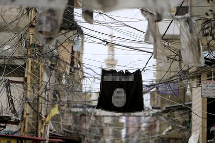 Сирия отказалась помогать ЕС искать террористов среди беженцев
