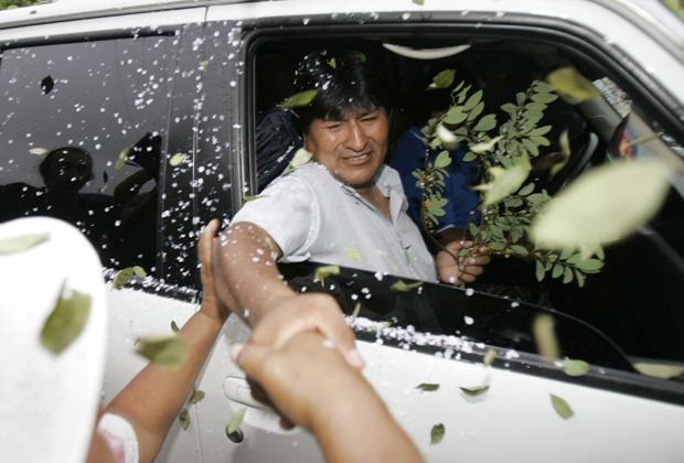 Сторонники Эво Моралеса закидывают его автомобиль листьями коки, 2005 год