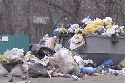 Медведев поручил разобраться с мусорной проблемой в российском городе