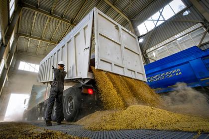 Российский регион собрался увеличить экспорт в полтора раза