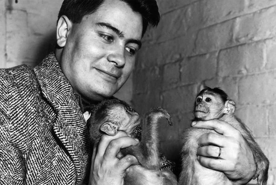 Джонс в 1954 году. До основания «Храма народов» он продавал обезьянок.