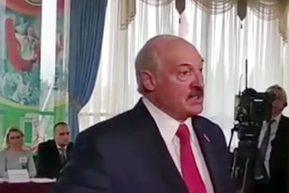 Лукашенко призвал вправить мозги наблюдателю за выборами