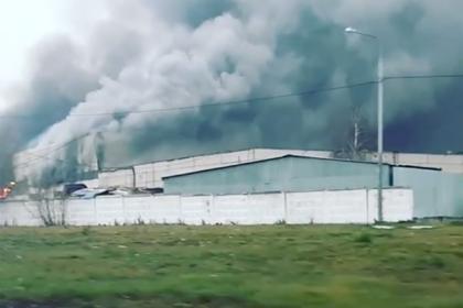Мощный пожар в московском автосервисе попал на видео
